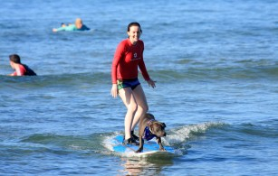 Surfing with Church